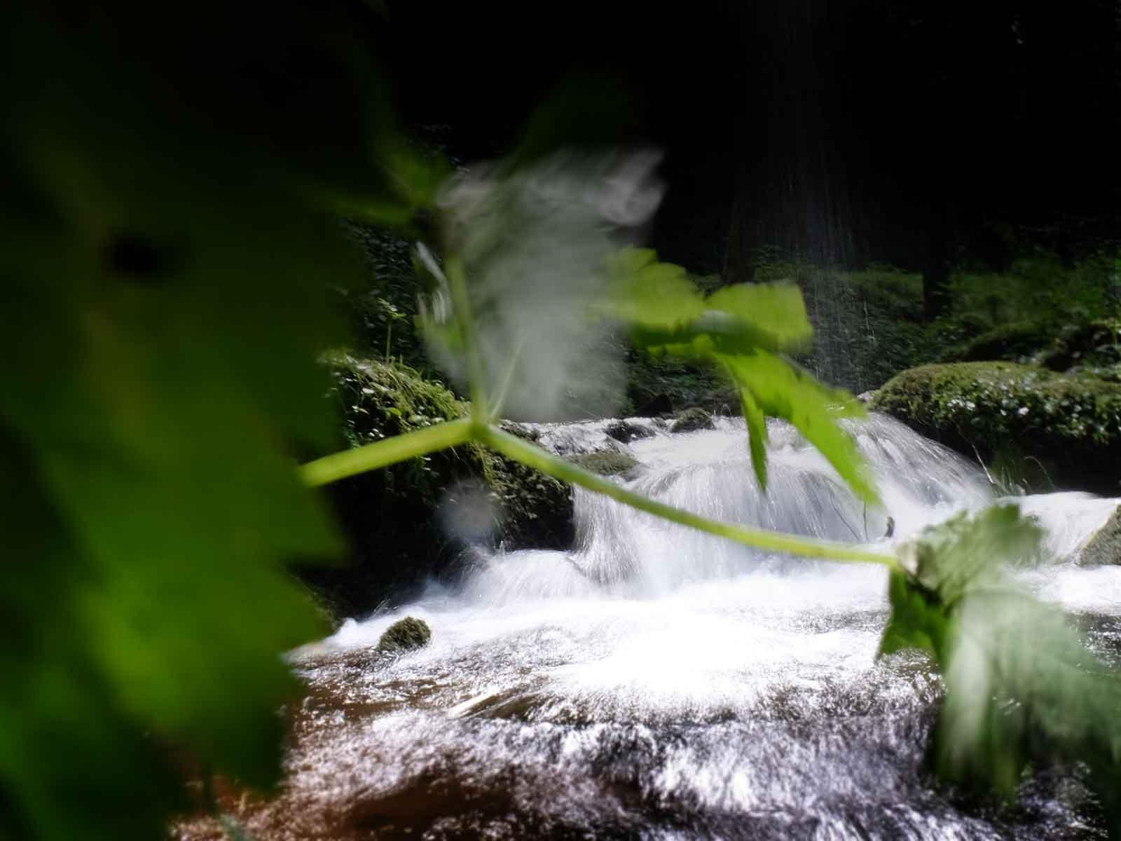 Carsharing Zukunft Teilen Natur Wasserfall 2